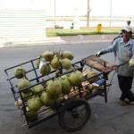cambodian-coconut-dealer-phnom-penh